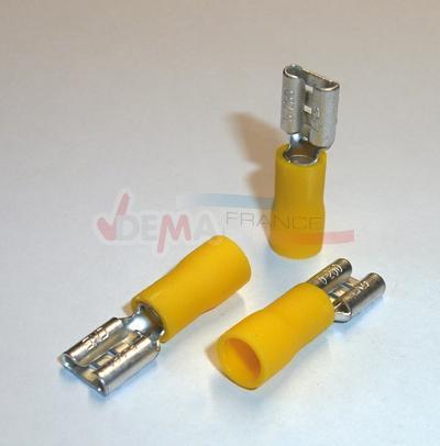 VINTEC - COSSE jaune femelle - en vente uniquement mag