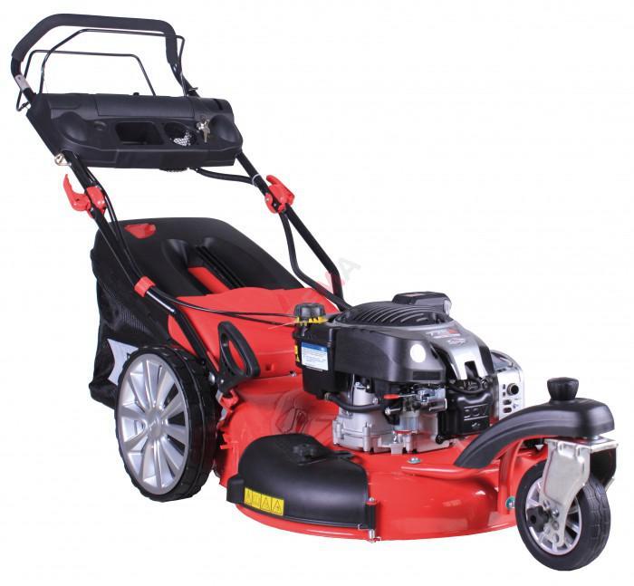 tondeuse thermique autotract e big wheeler trike 565 b s jardin entretien. Black Bedroom Furniture Sets. Home Design Ideas