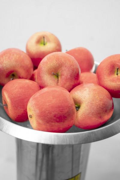 Broyeur de fruits électrique GOH 1500