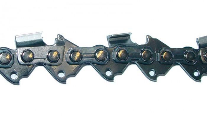 Chaîne Oregon GAK 600/650/1000 pour G95145 - G95156